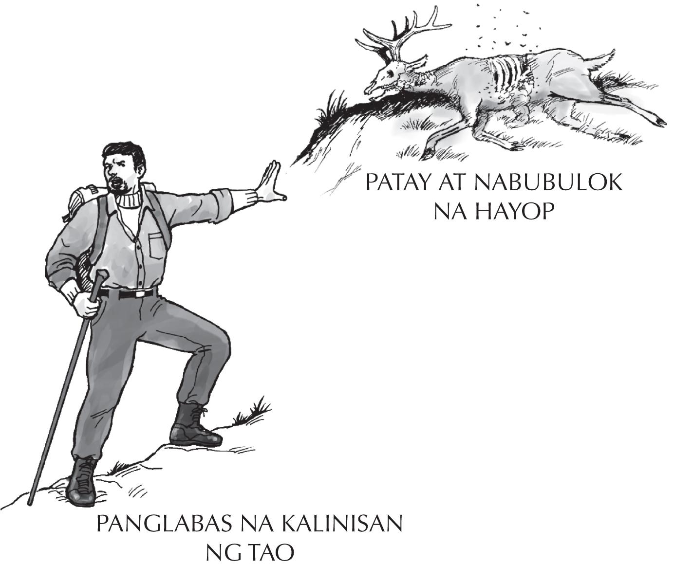 Gospel_Tagalog_p_4_Woodsman_Deer