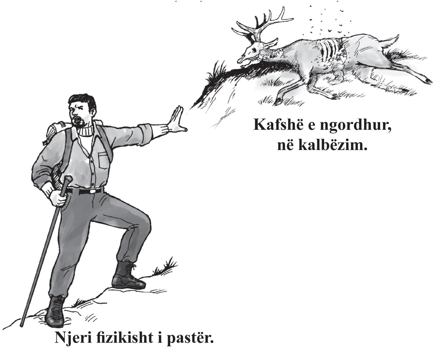 Albanian_Gospel_p_4_Woodsman_Deer